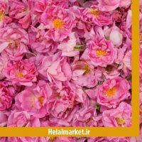 گل محمدی هلال مارکت